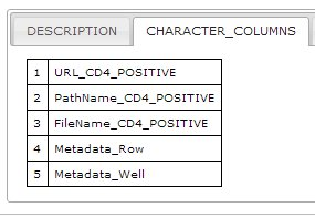 Summary Display CSV Character Columns Metadata